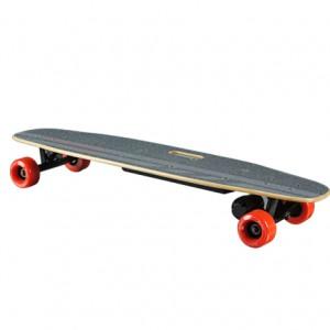 E-Board BenchWheel Longboard